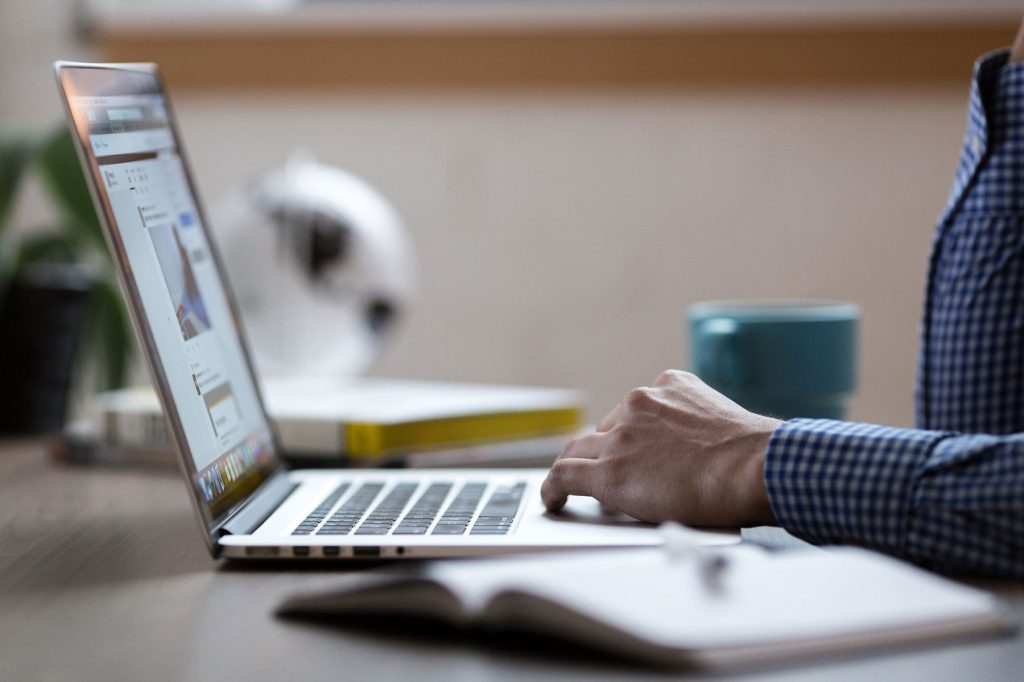 Net Fan Web Hosting and Maintenance Services